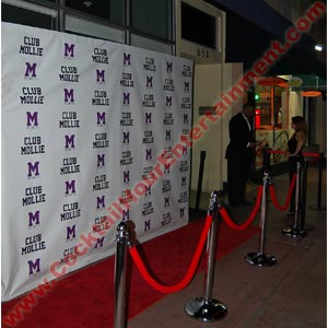 red carpet photo with custom step and repeat vinyl backdrop